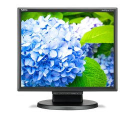"NEC E172M 43,2 cm (17"") 1280 x 1024 Pixel HD LED Nero"